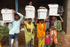 Bees for Poverty Reduction Programme