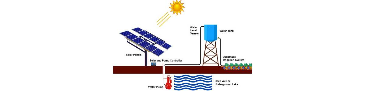 Innovative Solar powered drip irrigation for marginalized tribal women farmers with introduce fruit and vegetable in a small part of their land (0.31 ACRE) organic farming and inter cropping efficicent use of water resources with improved productivity sustainable income throughout the year.