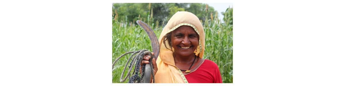Help 2000 tribal families fight hunger in Rajasthan