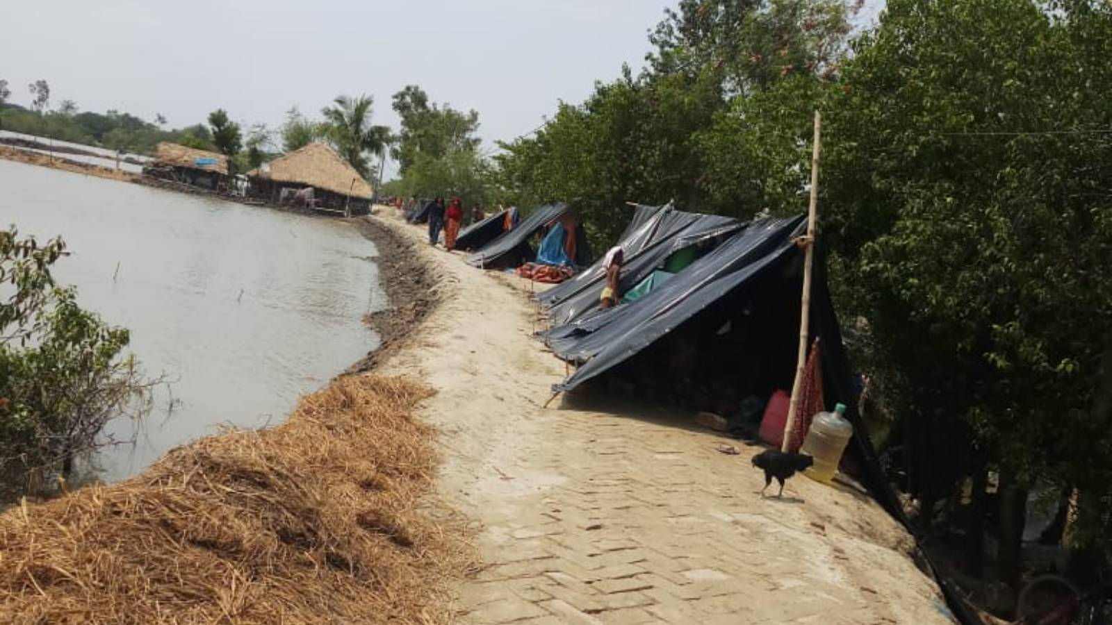 Relief Work in Cyclone YAAS affected areas in West Bengal