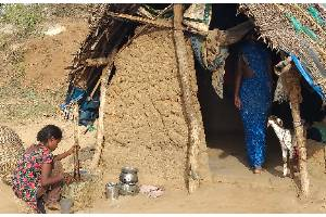 Food Security, Health and Education Program to Adivasi Women and Children